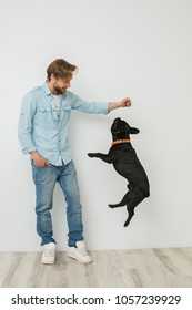 young blonde guy, handsome man, playing and loving his dog, making the dog jump, on white background