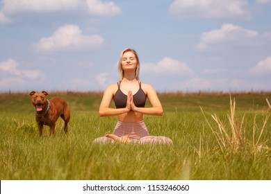 Young blonde woman doing yoga exercises in the field with her dog