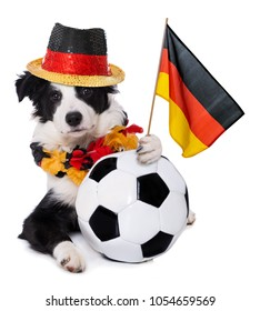 Young border collie with soccer fan outfit isolated on white