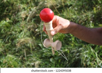 A young boy with a blue colored t-shirt holding a wooden kendama stick and playing with a red ball in a green grass lawn during a sunny summer