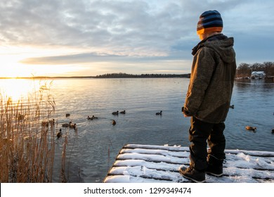 Young boy child standing on a jetty with snow looking at mallard duck birds in the water against winter sunset.