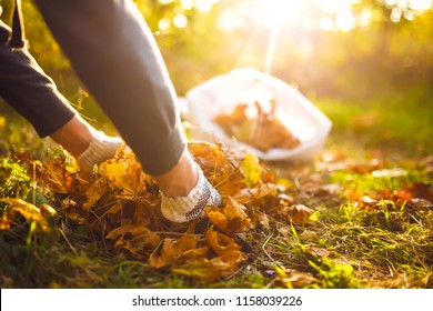 young boy cleans fallen leaves. concept of purity. autumn leaves. purity. Environment. otdoor. gloves on his hands. sunny weather. worker.volunteering, charity, cleaning, people and ecology concept.