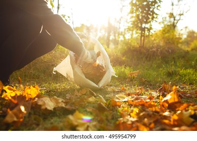 young boy  cleans  fallen leaves. concept of purity. autumn leaves. purity. Environment. otdoor. gloves on his hands. sunny weather. worker.volunteering, charity, cleaning, people and ecology concept