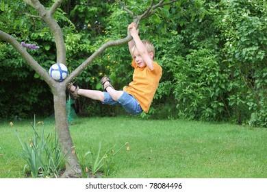A young boy climbs a tree