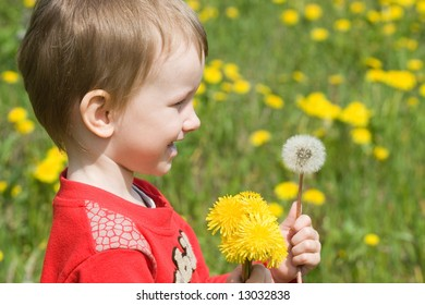 Young boy and a dandelion flower
