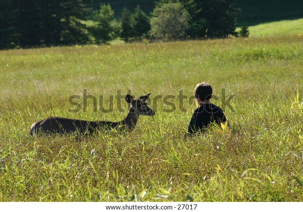 Young boy and a deer in a field