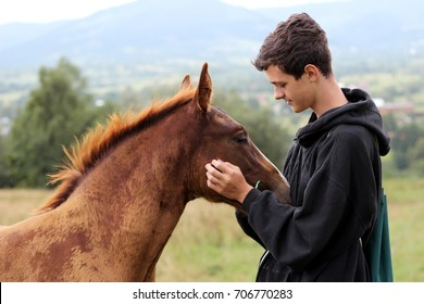 Young boy during the high mounting walking meets a young horse and communicates with it, wild nature, people and animals friendship concept, lifestyle summer outdoor