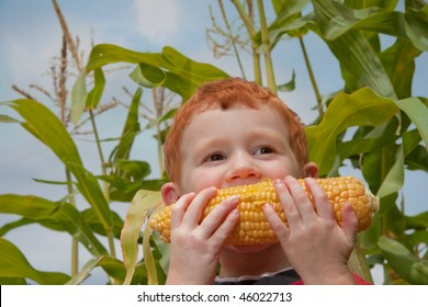 Young boy eating fresh corn with cornstalk and sky background