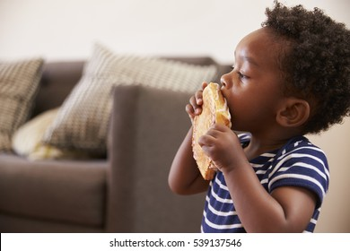Young Boy Eating Toasted Sandwich At Home