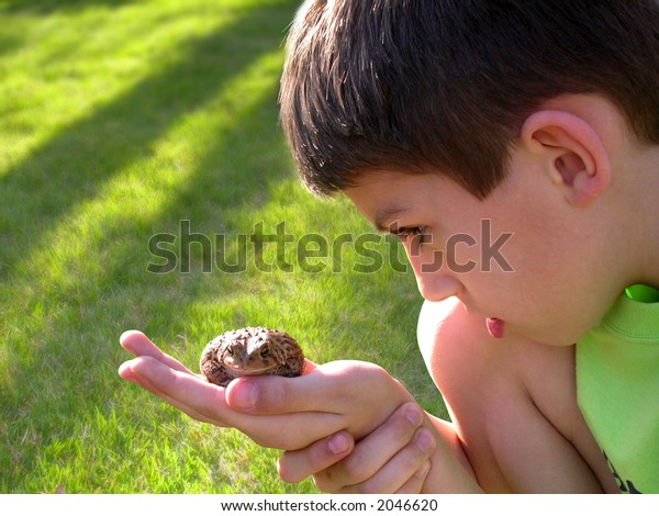 a young boy examining a toad on a summer day