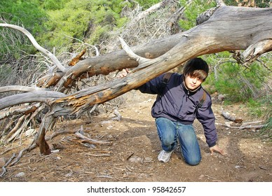 Young boy exploring a forest in Majorca (Spain)