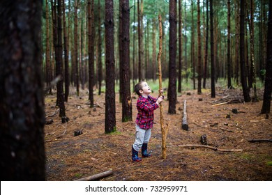 young boy exploring in forest woods