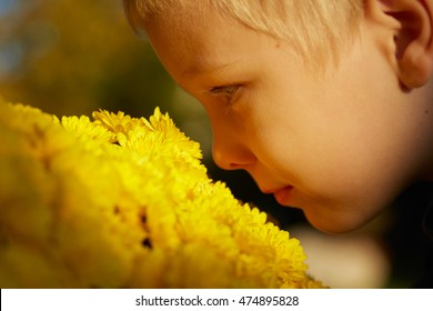 Young boy face from side, smelling yellow flowers outdoor