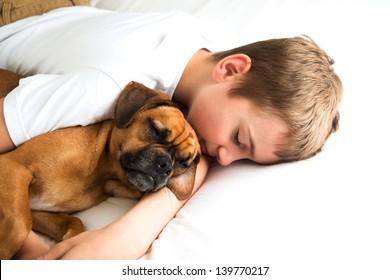 Young Boy Fell asleep Hugging his Dog