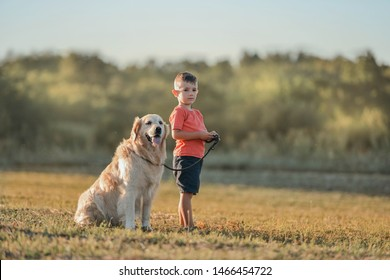 Young boy friendly walks golden retriever dog