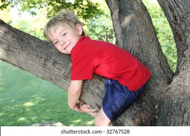 Young boy hugging a tree branch