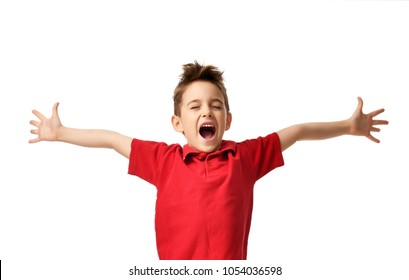 Young boy kid in red polo t-shirt celebrating happy smiling laughing with hands spreading isolated on white background