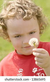 Young boy looking at dandelion clock ready to blow it.