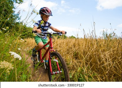 Young boy mountain biking