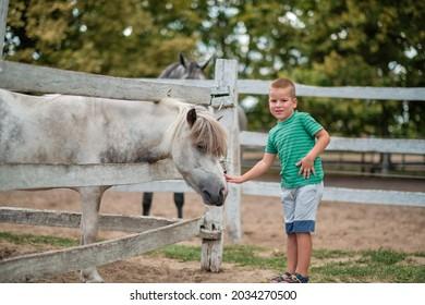 Junge Junge, die auf dem Land ein Pferd hacken