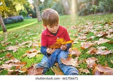 Young boy playing in Autumn leaves
