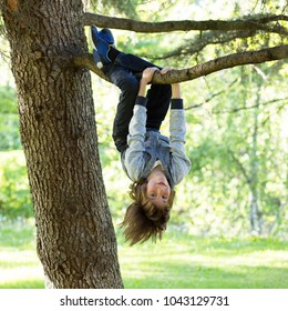 Young boy playing and climbing a tree and hanging upside down. Teen boy playing in a park.