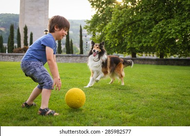 Young boy playing with a collie dog in the park with a ball