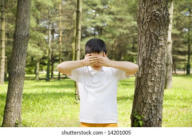 Young boy playing hide and seek, leaning between trees in park.