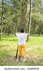 Young boy playing hide and seek, leaning against tree in park.