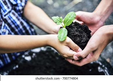 Young Boy and preeteen holding young plant in hands together against green spring background.In Earth day ecology holiday.Sustainable Development concept.In selective focus