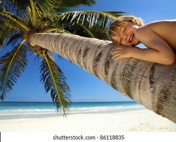 Young boy relaxes on a palm tree in a tropical beach