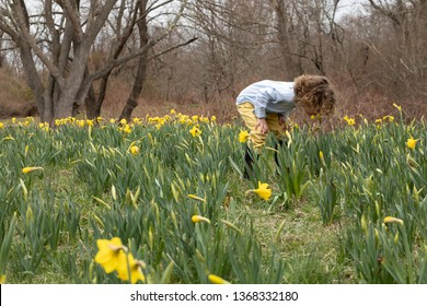 A young boy is running in a field of flowers. Yellow daffodils bloom in the spring. The child is running in the muddy and colorful flower field. He is having fun outside playing. Playing child
