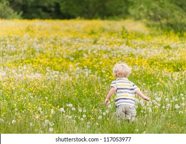 Young boy running on the flower meadow