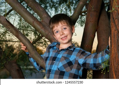 A young boy stands in a tree around sunset time.  He has a goofy expression on his face as he looks at the camera and is wearing a plaid shirt.