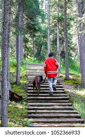 A young boy wakking up steps with his dog