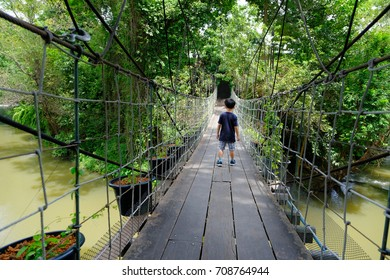 Young boy walk over a rope bridge in the forest