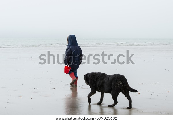 Young Boy Walking on the beach with dog in foggy day.