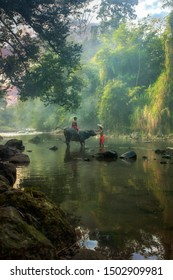 Young boys with their buffalo at beautiful river in Bogor West Java Indonesia. 04 08 2019