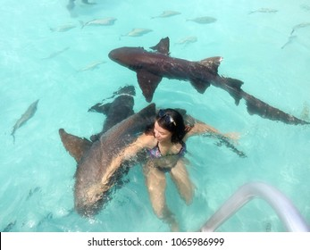Young brave woman tourist swimming with the wild free sharks of the Bahamas