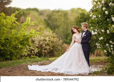Young Bride and Groom couple in a blooming garden. Tender holding each other. Spring wedding. Redhead girl with long hairs. Young family outdoor image near blooming bush of spirea. Love and tenderness