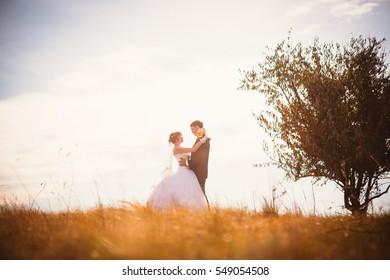 young bride and groom on  the background of the field