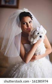 Young  bride in the morning at home with tiny dog in hands.
