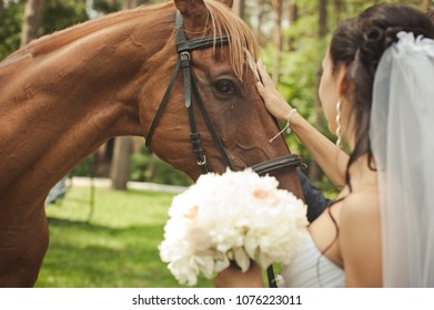 Young bride stroking horse in forest  park. Horseback riding. Brown horse.