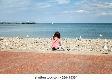 Young British woman sitting on Llandudno promenade looking out to sea drinking coffee surrounded by gull sea birds. Llandudno promenade. from behind