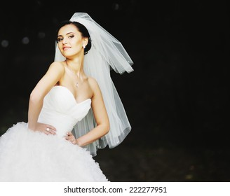 Young brunette bride on wedding day.