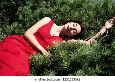 Young brunette woman in a red dress lying on the branches of a pine with eyes closed