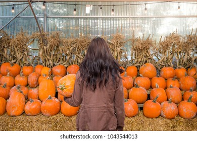 Young brunette woman standing in front of a selection of pumpkins.