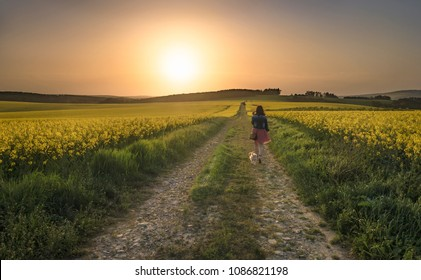 Young brunette woman wandering with her dog on a country road, through yellow canola fields at sunset, in South Moravia, Czech Republic.