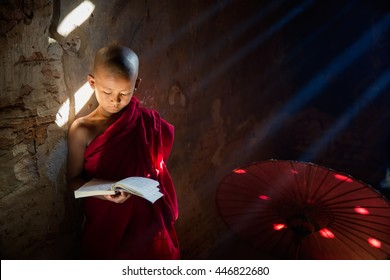 Young Buddhist monk reading and study in , sitting in pagoda inside monastery, Myanmar.