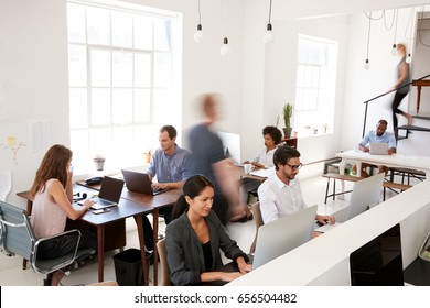 Young business colleagues working in a busy open plan office